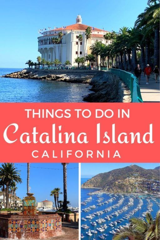 Things To Do In Catalina Island With Kids California Travel Road