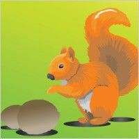 "Squirrel with Nut - the thought behind this - ""Sometimes you feel like a nut; sometimes you don't...""....."