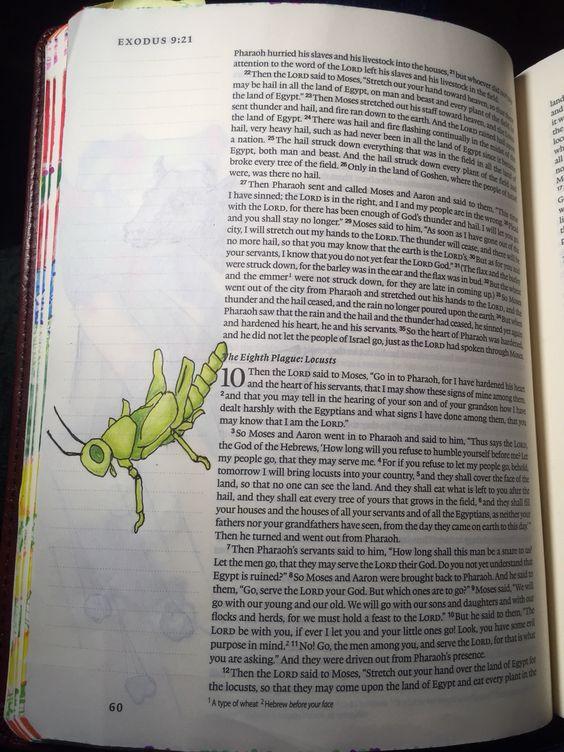 Eighth plague. Exodus 10:1-6.  Sherrie Bronniman -Art Journaling: In My Bible