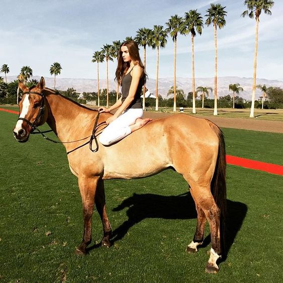 Instagram media by zintapolo - #tbt to winter in Indio, CA. I can't wait for the polo season to start there again.