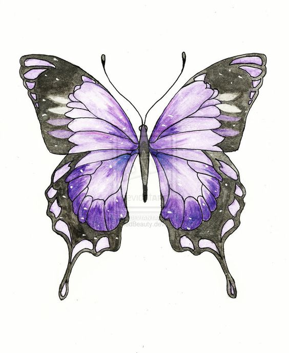 Violets, Tattoos and body art and Ideas on Pinterest
