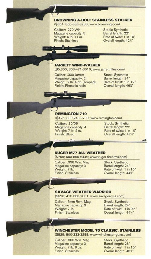Our Favorite Cartridges And Rifles For Hunting Elk 2020