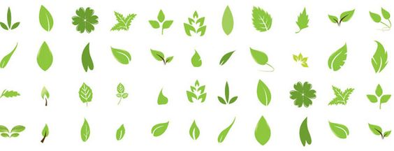 Green Leaves, free vectors - 365PSD.com