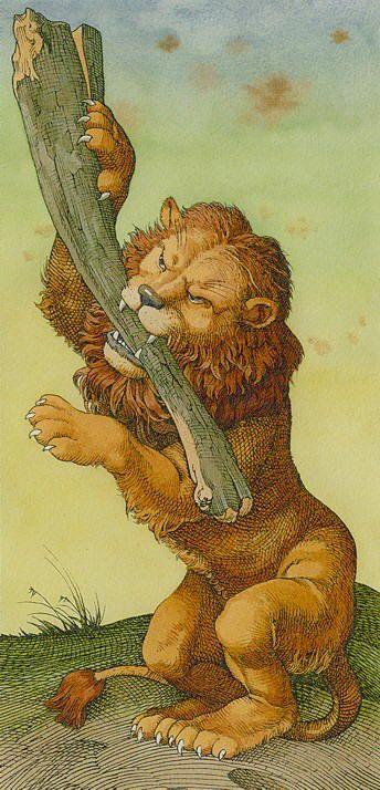 durer - asso di bastoni - ace - wands #jomanzo #ccccc #youtube #youtubeitalia #tarocchi #zodiaco #tarot #zodiac