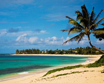 Haleiwa, Sunset Beach, Oahu : December.  will be baby's first trip!