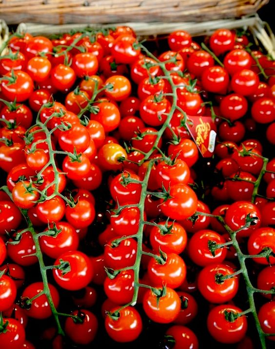 unreal! tpa-paris tomatoes