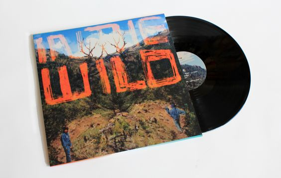 FaltyDL's new album 'In The Wild', released 11th August 2014 on Ninja Tune. Available on on 2xLP, CD & digitally.