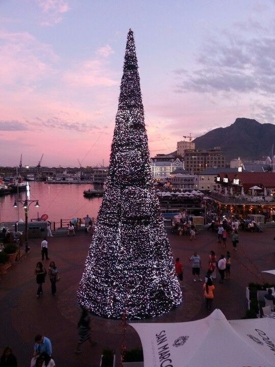 Cape Town gets in the holiday spirit! we have programs to go to South Africa!