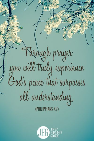 """Through prayer you will truly experience God's peace that surpasses all understanding."" -Philippians 4:7:"