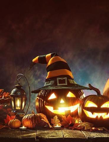 Halloween Pumpkins Under Moonlight For Holiday Photography Backdrop – Shopbackdrop