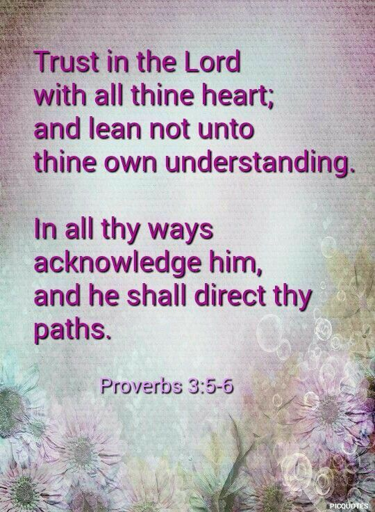 Pin on 2 Timothy 3:16, 17
