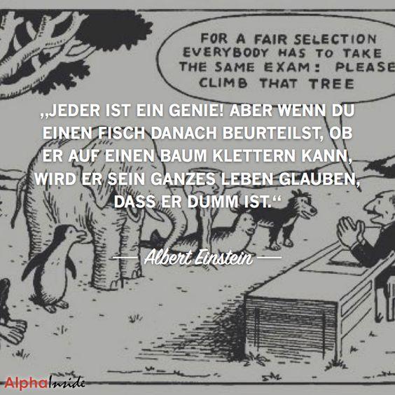 """JETZT FÜR DEN DAZUGEHÖRIGEN ARTIKEL ANKLICKEN!------------------------""""Jeder ist ein Genie! Aber wenn Du einen Fisch danach beurteilst, ob er auf…"""