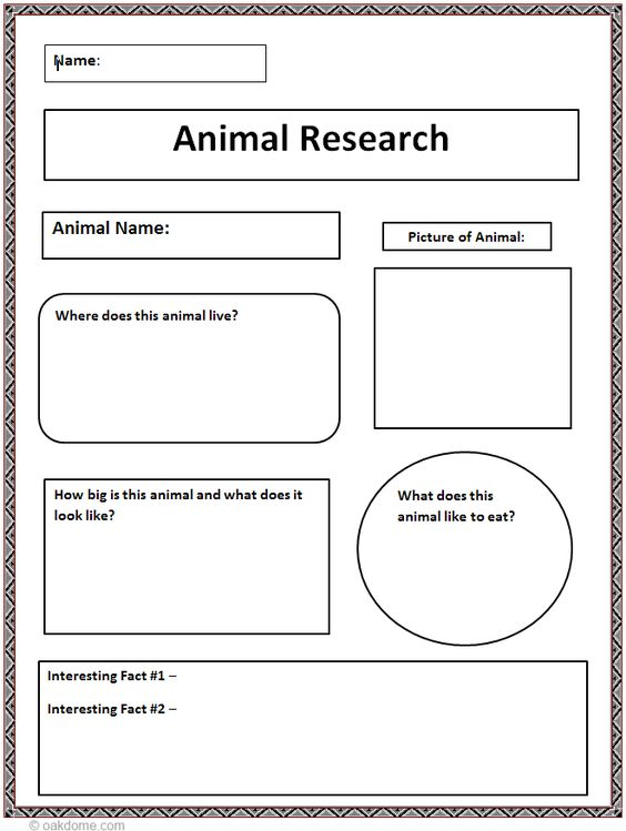 prediction essay rubric