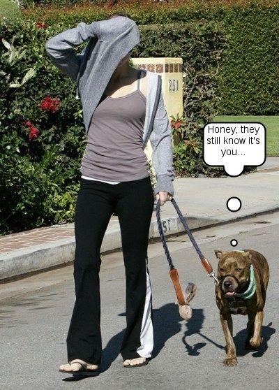 Jessica Biel dog Tina   Jessica Biel Picks Up Where She Left Off
