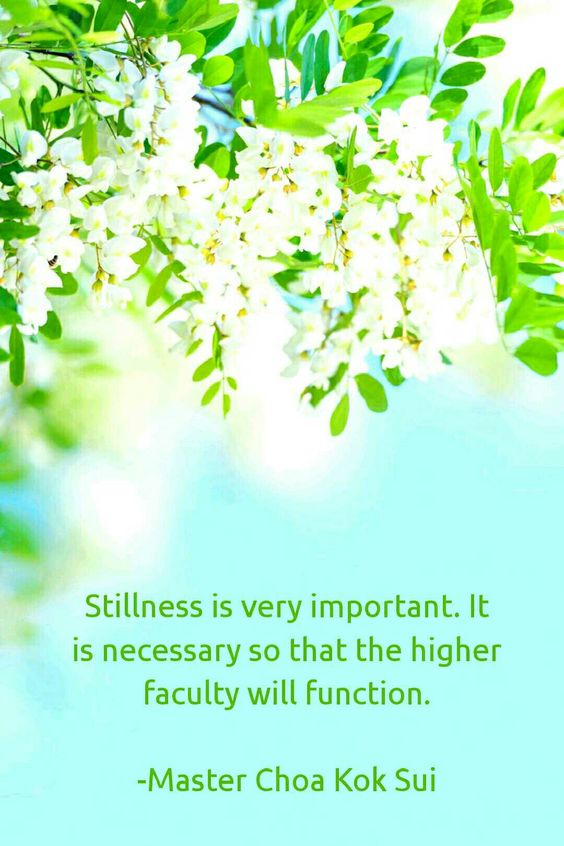 Pearls of Wisdom by MCKS #quotes #MCKS #stillness