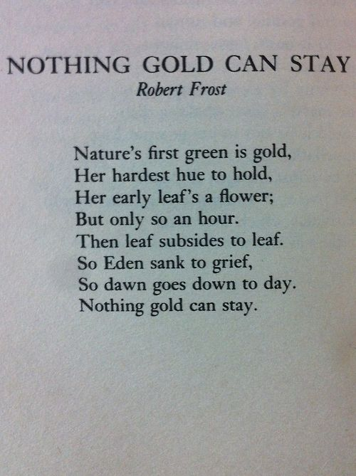 Nothing Gold Can Stay - Robert Frost  : : :   At least we have the day old friend. Ahh this poem reminds me of the outsiders i love that book so much