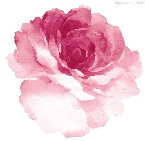 342 Best Watercolor Ideas Images On Pinterest