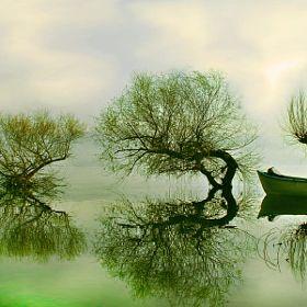 Ahmet Utgan / 500px