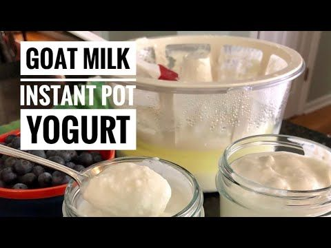 Goat Milk Yogurt In The Instant Pot Bonus Buttermilk Goat Milk Recipes Instant Pot Yogurt Goat Milk Yogurt