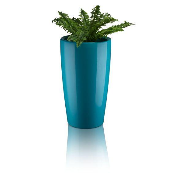 Der Kunststoff-Pflanzkübel RONDOMATIC 75 ist ein äußerst geschmackvoller, schlanker Blumenkübel, welcher optische Glanzpunkte in Wohnräumen, Arztpraxen und in Geschäftsräumen setzt. Die edel glänzende Oberfläche in Cyan verleiht dem Pflanzkübel einen einzigartigen Look und macht ihn zum Blickfang.