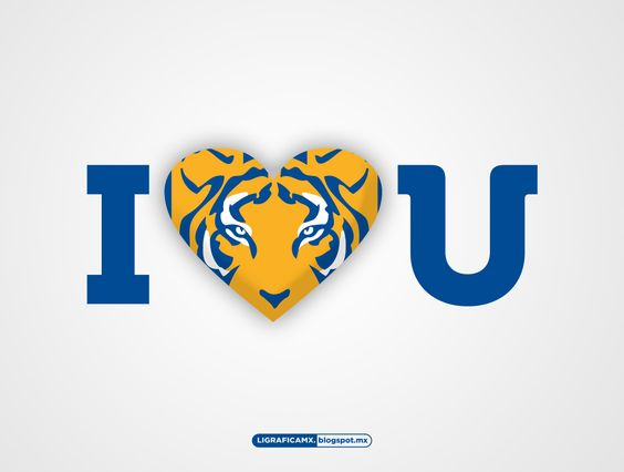 Vamos tigres asi se hace 3-0