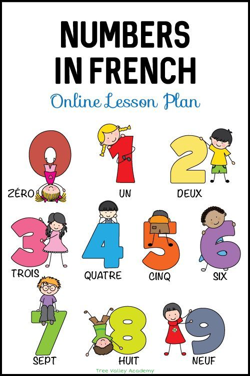 Learn Numbers in French - Lesson Plan   Learning french for ...