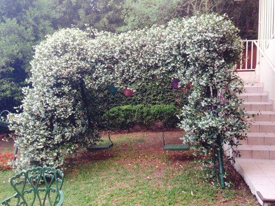 Hermoso arco de flores en los columpios