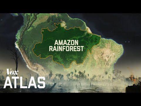 The Destruction Of The Amazon Expla Amazon Classroom Images