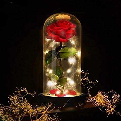 E Manis Rose Enchantee La Belle Et La Bete Enchanted Rose Elegant Dome En Verre Avec Lumieres Rose Enchantee Domes De Verre Decoration