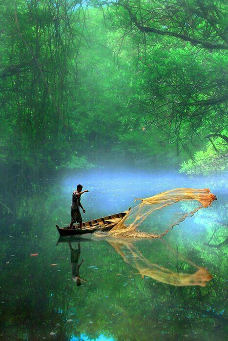 Amazônia, Brasil