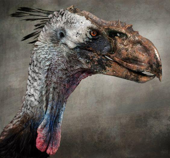 Troodon Forbidden Dinosaur History