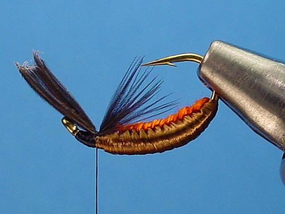 woven hackle fly