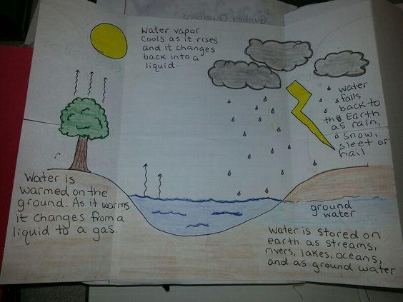 inside water cycle diagram