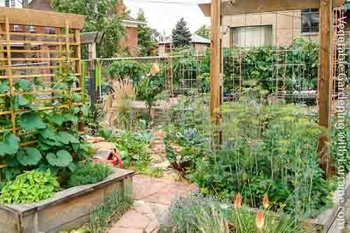 Raised bed vegetable gardens with trellises to maximize for Vegetable garden trellis designs