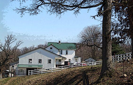 Ohio Amish Country - Christine B. © 2012: