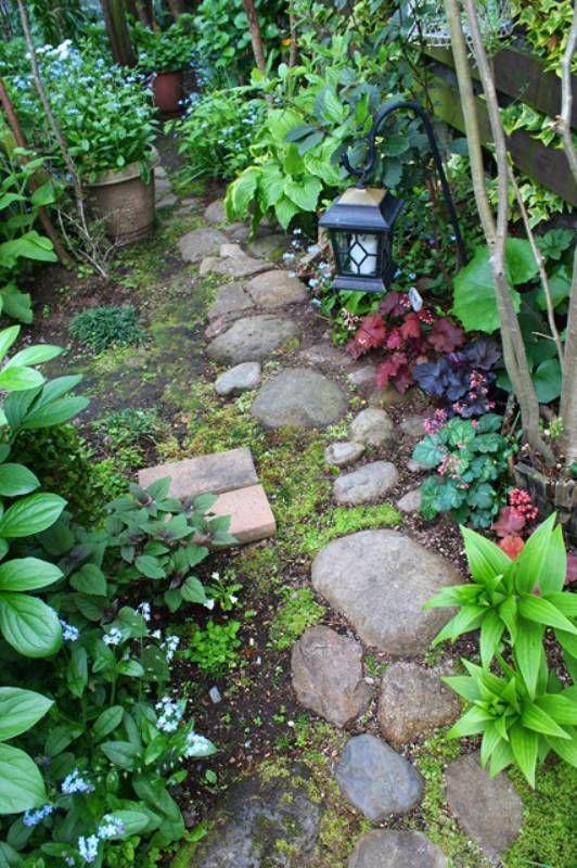 可憐な花々と 野原 のような庭を目指して 121 オルラヤさん アイリスプラザ メディア 庭 ガーデニング 庭のプロジェクト 庭