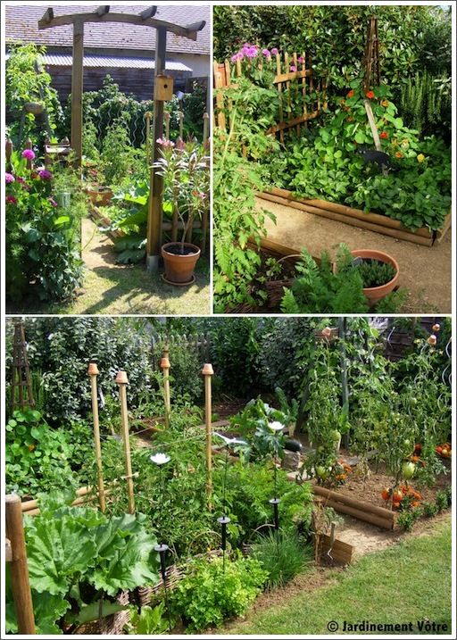 potager in the vegetable garden pinterest jardins herbes aromatiques et ali. Black Bedroom Furniture Sets. Home Design Ideas