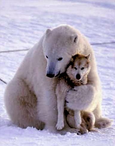 Bear hugs.