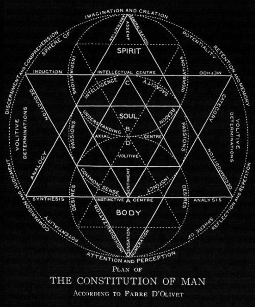 Chaosophia218 Plan Of The Constitution Of Man According To Fabre