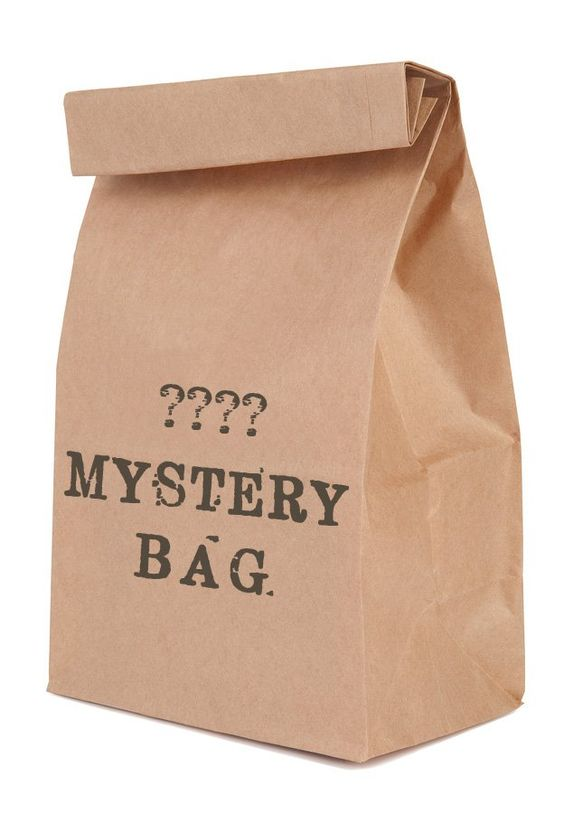 Create an Engineering Mystery Bag Challenge for Kids | The ...
