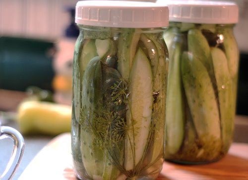 best pickles garlic dill pickles canning pickles pickling refrigerator ...