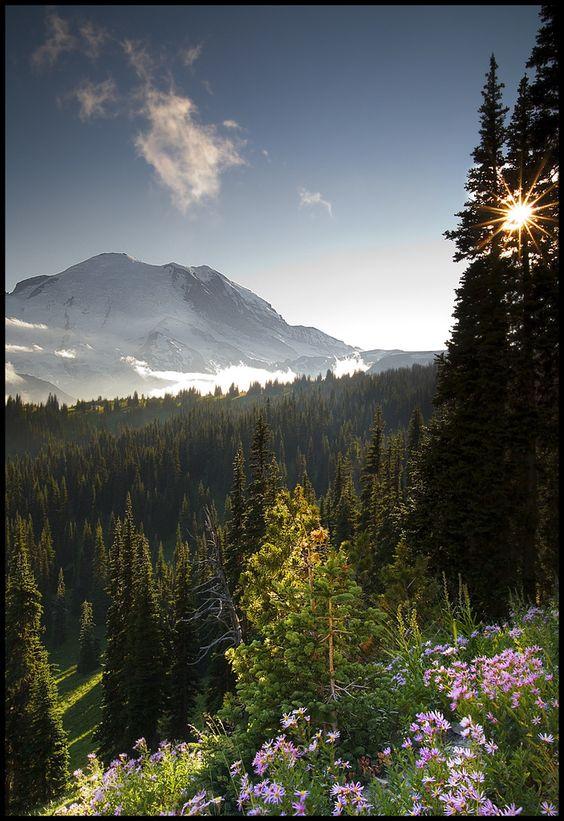 Mt. Rainier, WA. Would love to go hiking here!