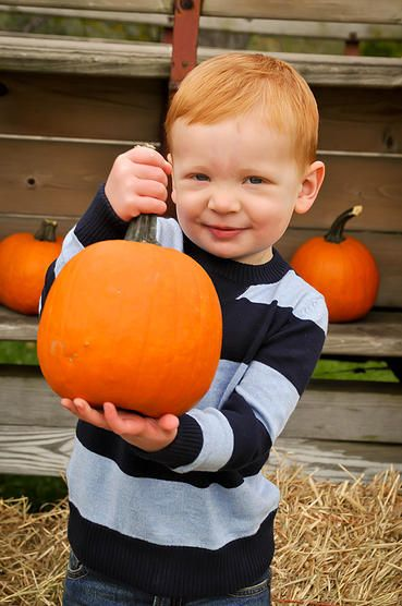 kim gayeski photography * 2.5 years old * pumpkin patch* Fall photo session