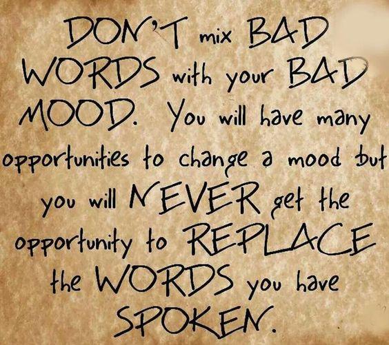 Bad words/bad words