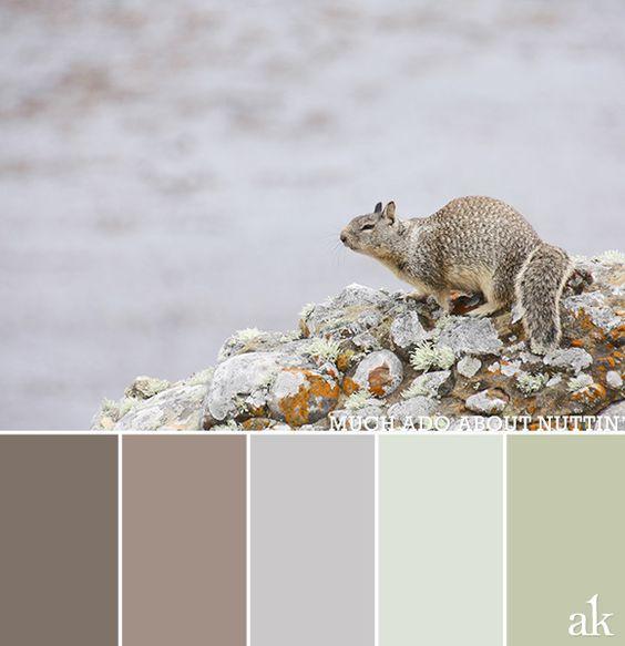 color palette | Akula Kreative