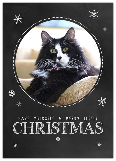 Free christmas card templates and photoshop on pinterest for Photoshop holiday card templates