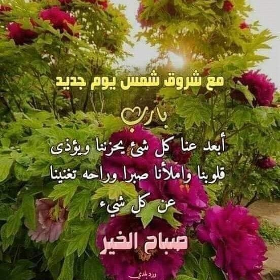 Pin By Aya Zoubeir On Bonjour A Publier In 2020 Jumma Mubarak Beautiful Images Morning Images Good Morning Images