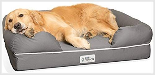 Petfusion Memory Medium Large 91x71cmx23cm Pet Supplies And Bed Best Supplies Dog Foam For Grey Large Medium Memory Petfusion Uk Best Orthopedic Dog Bed Orthopedic Dog Bed Cool Dog Beds