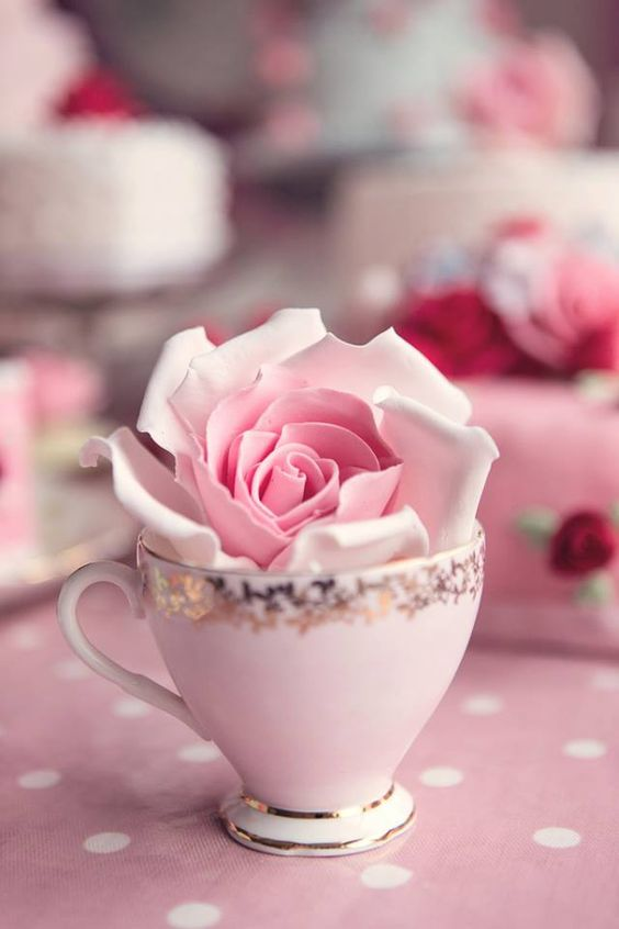 💕Pinky Pleasures  With ༺✿ I'm a Girℓყ Girℓ! ✿༻ During Pink Tea Time