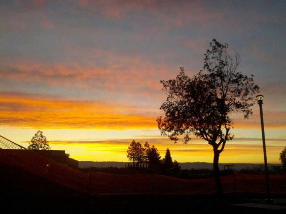 A sunset at Butte Community College campus.